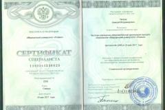 Сертификат специалиста 2017
